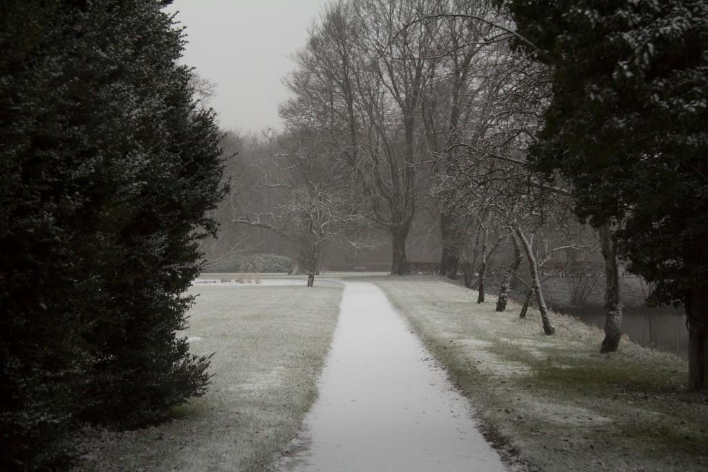 Klosterhaven er en park med store grønne plæner, alleer, solitære træer og farverige blomsterbede. Adgang fra 8-18.