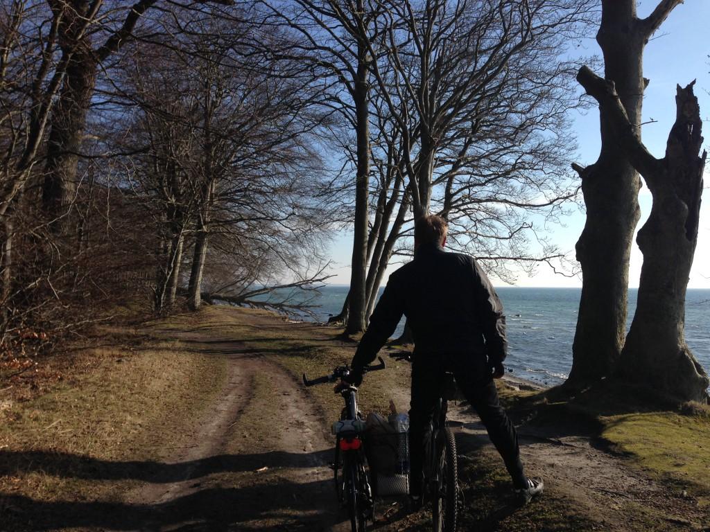 Vi cykler selv. Der er ikke noget skønnere end en tur gennem skoven med den skarpe morgensol og udsigt til det blå hav. Her er vi på strækningen mellem Faxe Ladeplads og Vemmetofte.